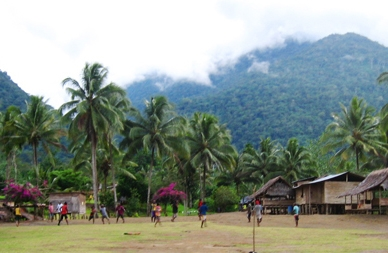Opłakane skutki obecnej definicji lasu - list do FAO