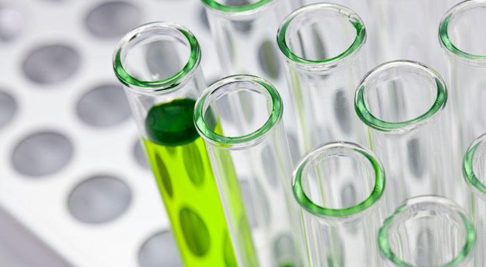 Jak substancje chemiczne hakują nasz system odpornościowy izwiększają ryzyko zakażenia koronawirusem