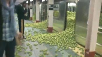 Nowojorskie jabłka niezgody