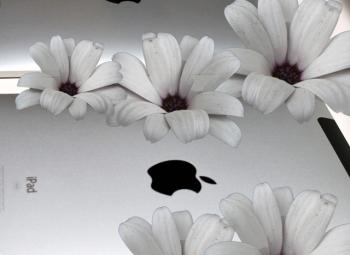 8 czerwca zaniosą białe wieńce do sklepów Apple