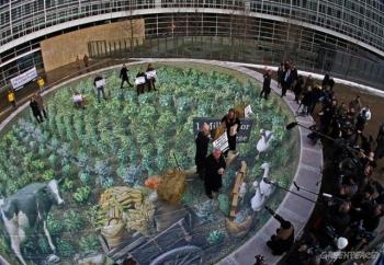 Milion podpisów przeciwko GMO przekazanych Komisji Europejskiej