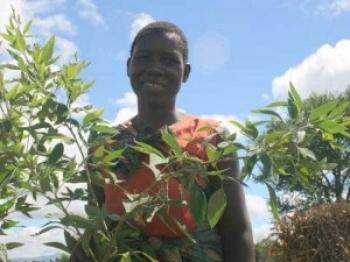 Raport ONZ: mniej pestycydów = więcej jedzenia