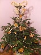 Świąteczne drzewko odpowiedzialnego konsumenta