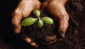 Pomóż powstrzymać rozwój rynku dla niebezpiecznych nasion