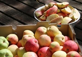 Alternatywne systemy żywnościowe: kooperatywy spożywcze