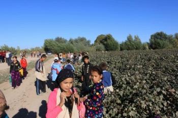 Daewoo - przestań wspierać niewolnictwo wUzbekistanie!