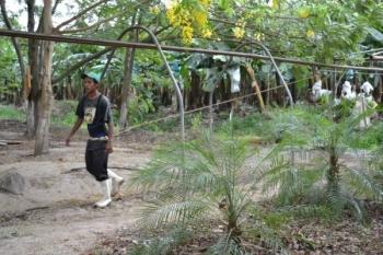 Łamanie praw pracowniczych – wesprzyj apel owszczęcie działań skierowany do władz Hondurasu