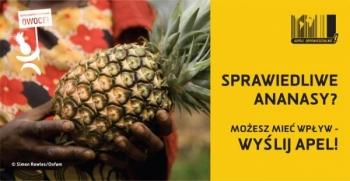 Sprawiedliwe ananasy? Możesz mieć wpływ - WYŚLIJ APEL!