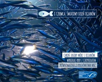 8 czerwca obchodzimy Światowy Dzień Oceanów. Pomóż chronić zasoby mórz!