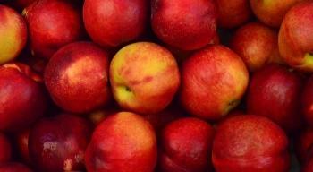 Jabłko pełne chemii, czyli opestycydach