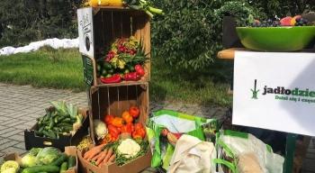 Rynek spożywczy wPolsce ijego alternatywne formy. Nowy raport Fundacji Kupuj Odpowiedzialnie