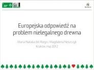 FLEGT. Europejskie rozwiązanie problemu nielegalnego drewna?