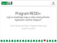 REDD. Program ograniczania deforestacji i degradacji lasów w krajach rozwijających się.